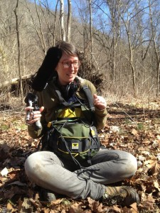 cat recording in new river gorge